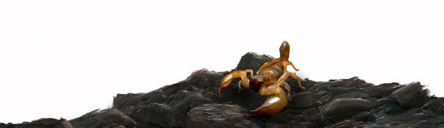 File:Initium GiantScorpion.jpg