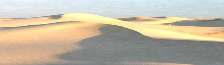 Banner---rolling-dunes-1