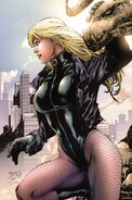 774258-black canary by dinei
