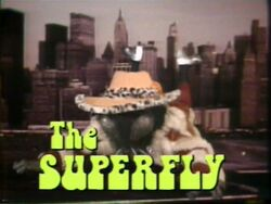 220-superfly