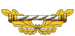 Sq-collar-dg