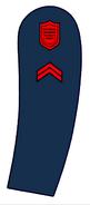 Usanswc-cpl