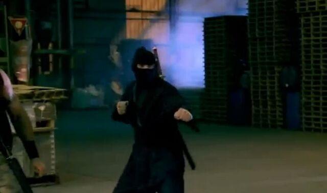 File:Inspector Gadget 2 Ninja.jpg