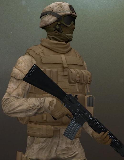 INS Security Rifleman