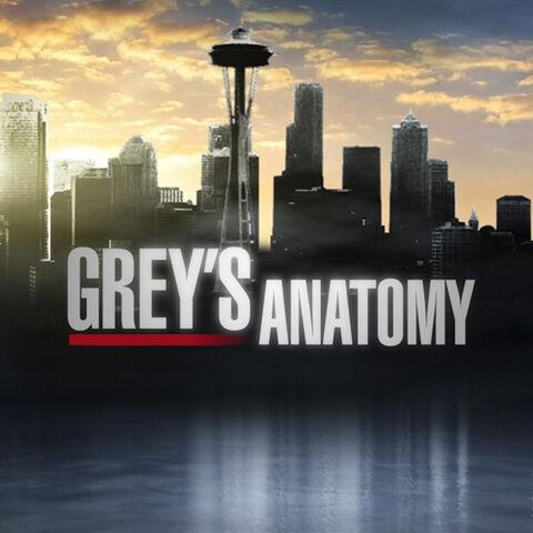 File:Greys Anatomy.jpg