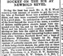 1894-95 in British hockey