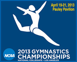 Promo-Box-WGym-NCAAs13-3