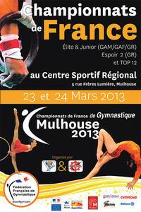 Championnat de france elite junior et par equipe top 12 gam gaf championnat de france elite junior espoir 2 gr samedi 23 mars 2013 large