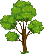 File:Forest 26.png