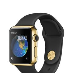 Yellow Gold Case