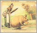 1885-05-23 Reigh pig blackberries.jpg