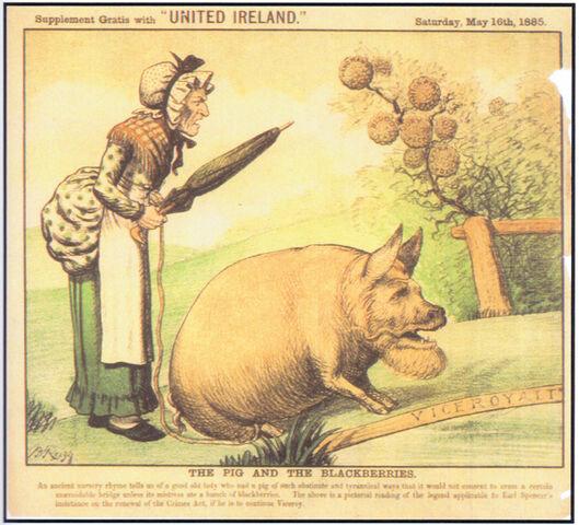 File:1885-05-23 Reigh pig blackberries.jpg