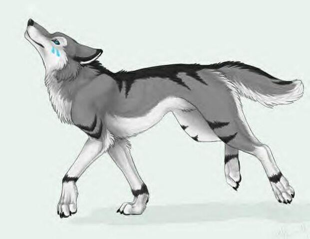 File:Anime-wolves-27295106-636-491.jpg