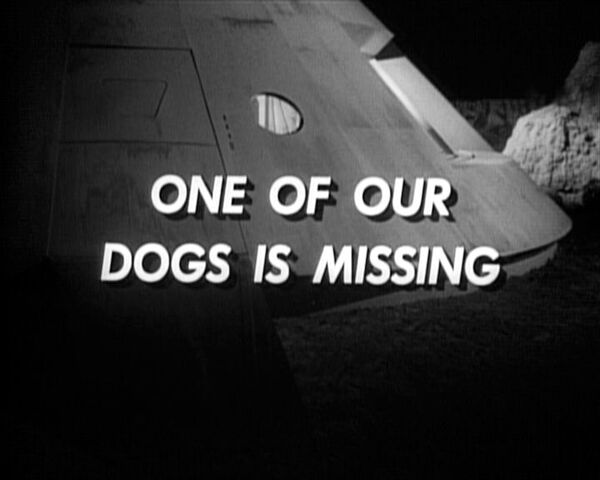 File:One of our dogs is missing.jpg