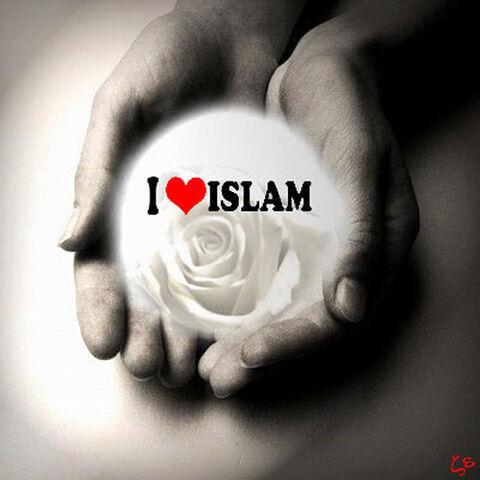 File:Love-islam.jpg