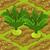 Celeriac 70