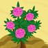 Camellia 70