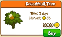 Breadfruit Tree Store