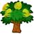 Bael tree 50