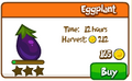 Eggplant shop