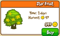 Star Fruit Tree Store