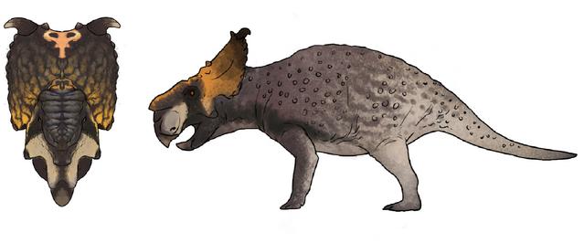File:Pachyrhinosaurus Death Skin The Isle.png