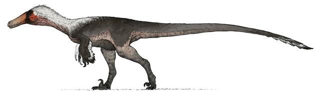File:King Austroraptor The Isle.jpg