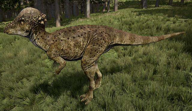 File:Aracea Pachycephalosaurus The Isle.png