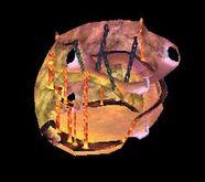 Lair T4 Lunus Chamber - Lair