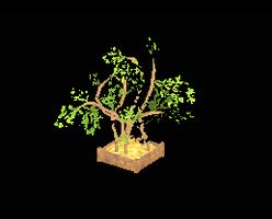 Tree swampy with planter