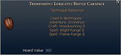 Tremendous Loricatus Beetle Carapace