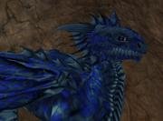 Hatchling Dragon