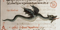 Arabian Flying Snake