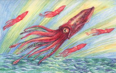 400px-Flying-squid