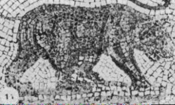 352px-Roman-Age Ethiopian Bear Mosaic