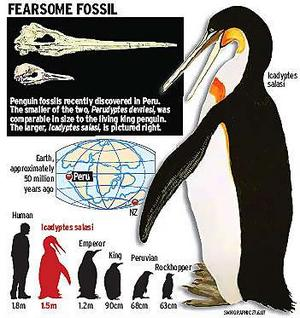 File:Jtpenguin narrowweb 300x318,0.jpg