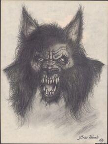 M dogman