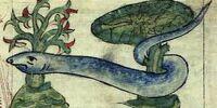 Mediterranean Giant Snake