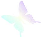 File:Icon-hikaritotomoni.png
