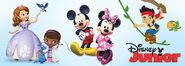 Disney Junior friends