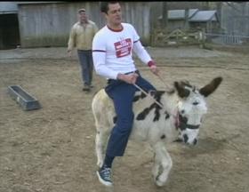Donkey Intro