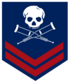 Jackass military logo.png