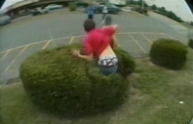 Skateboard hedge brandon