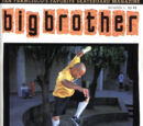 Big Brother Issue 6
