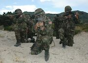 Turkish army nato exercise