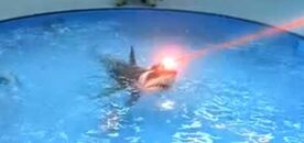 Sharks-With-Frickin-Laser-Beams-Attached-To-Their-Heads-Austin-Powers