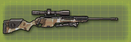 File:Ssg08 p pic.png