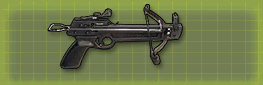 Pistol xbow c pic