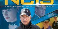 Season 13 (NCIS)