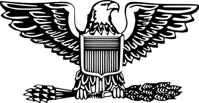 File:US Army Colonel.png